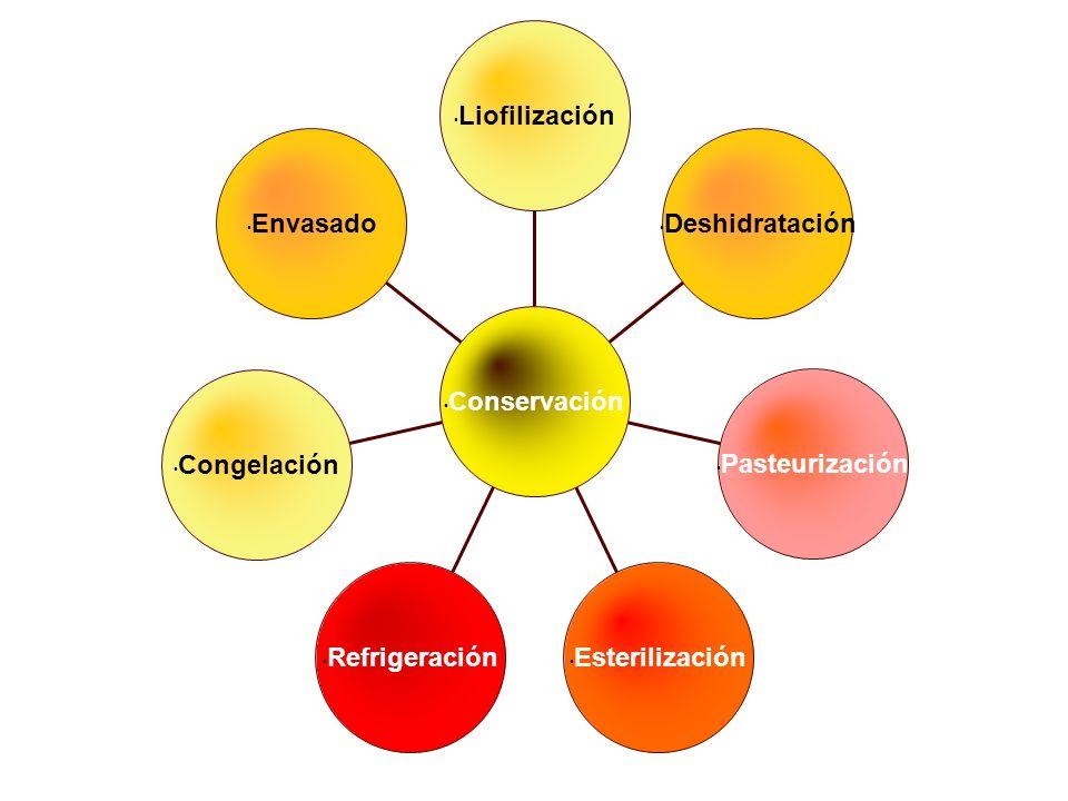 Liofilización Envasado. Deshidratación. Conservación. Congelación. Pasteurización. Refrigeración.