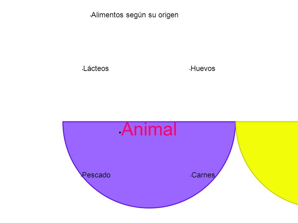 Alimentos según su origen