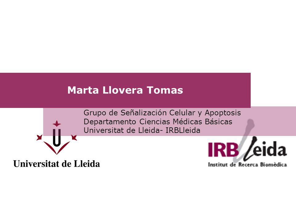 Marta Llovera Tomas Grupo de Señalización Celular y Apoptosis