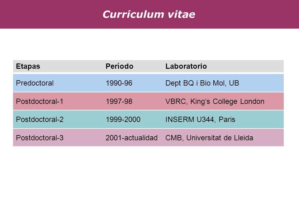 Curriculum vitae Etapas Período Laboratorio