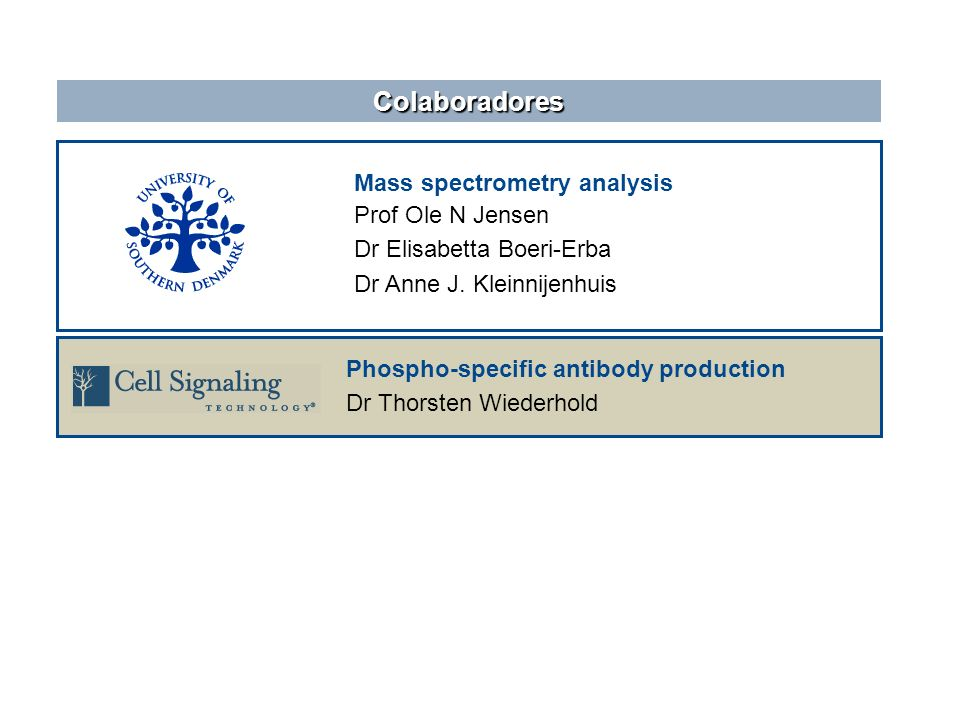 Colaboradores Mass spectrometry analysis Prof Ole N Jensen