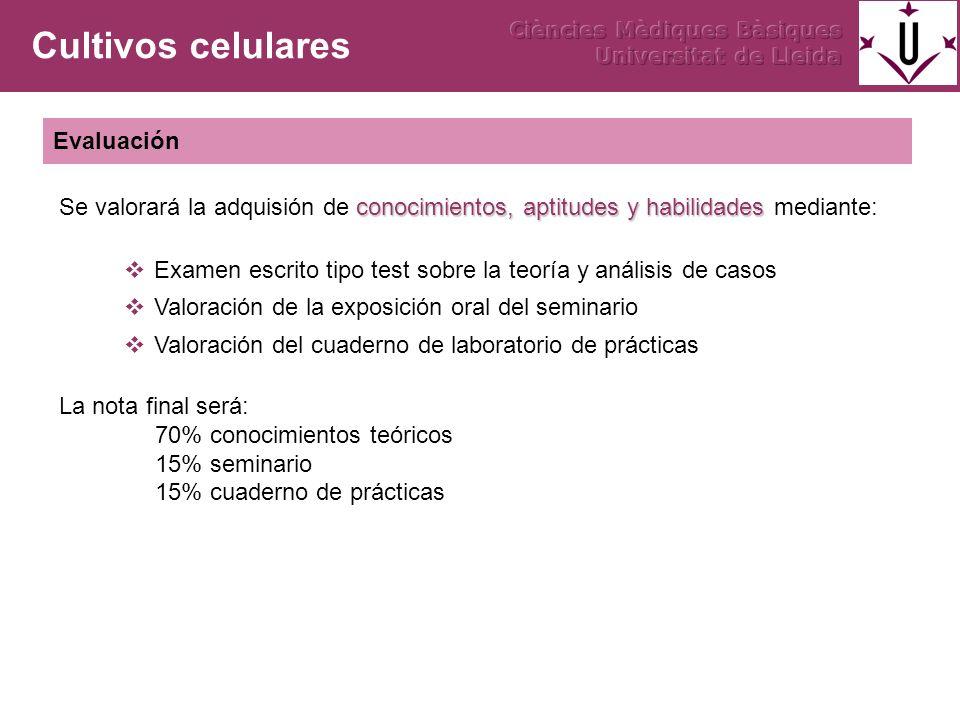 Examen escrito tipo test sobre la teoría y análisis de casos