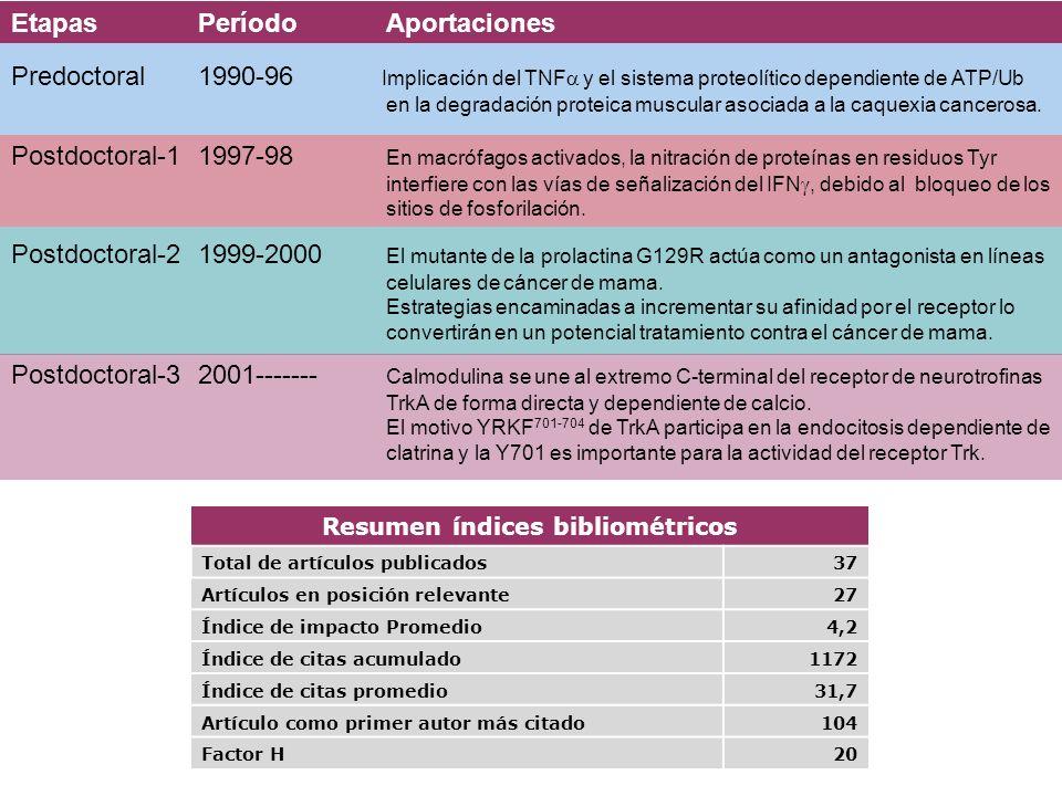 Resumen índices bibliométricos
