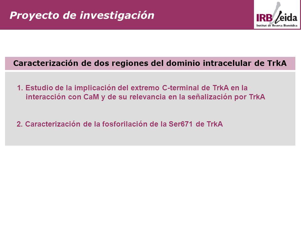 Caracterización de dos regiones del dominio intracelular de TrkA