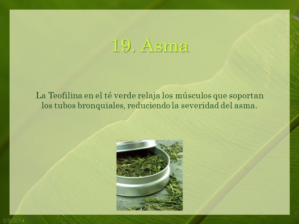 19. Asma La Teofilina en el té verde relaja los músculos que soportan los tubos bronquiales, reduciendo la severidad del asma.