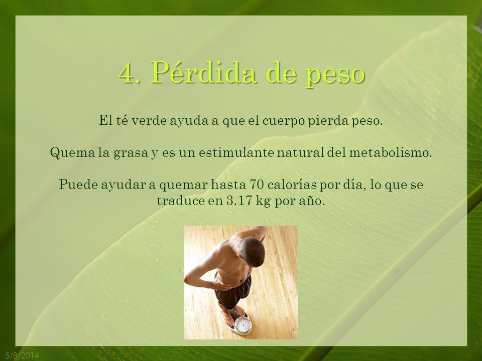4. Pérdida de peso El té verde ayuda a que el cuerpo pierda peso.