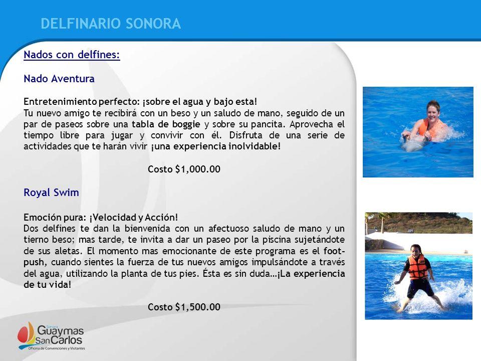 DELFINARIO SONORA DELFINARIO SONORA Nados con delfines: Nado Aventura