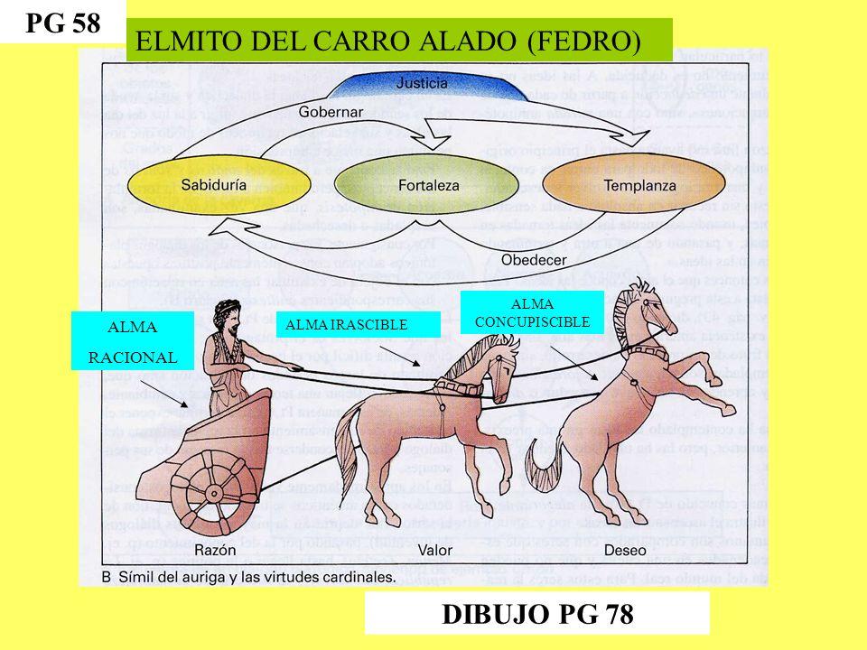 ELMITO DEL CARRO ALADO (FEDRO)