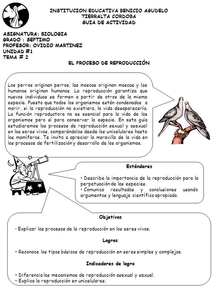 INSTITUCION EDUCATIVA BENICIO AGUDELO EL PROCESO DE REPRODUCCIÓN