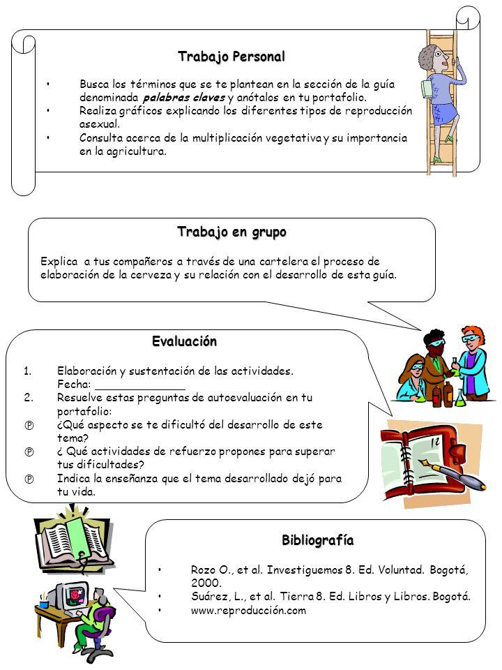 Trabajo Personal Trabajo en grupo Evaluación Bibliografía