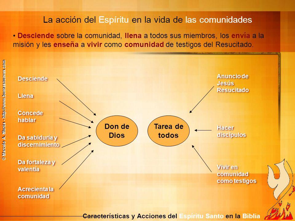 Características y Acciones del Espíritu Santo en la Biblia