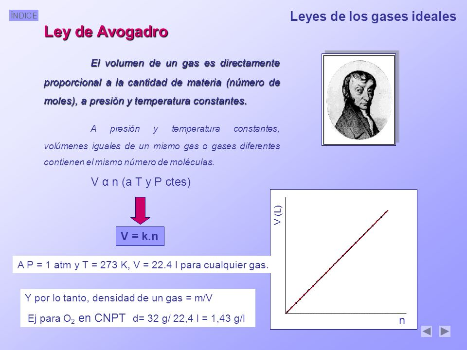 Ley de Avogadro Leyes de los gases ideales