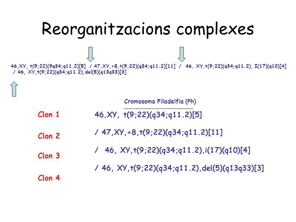 Reorganitzacions complexes