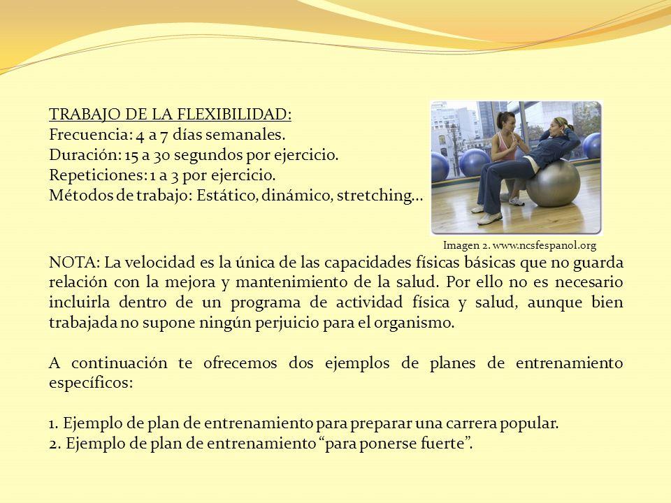 TRABAJO DE LA FLEXIBILIDAD: Frecuencia: 4 a 7 días semanales.