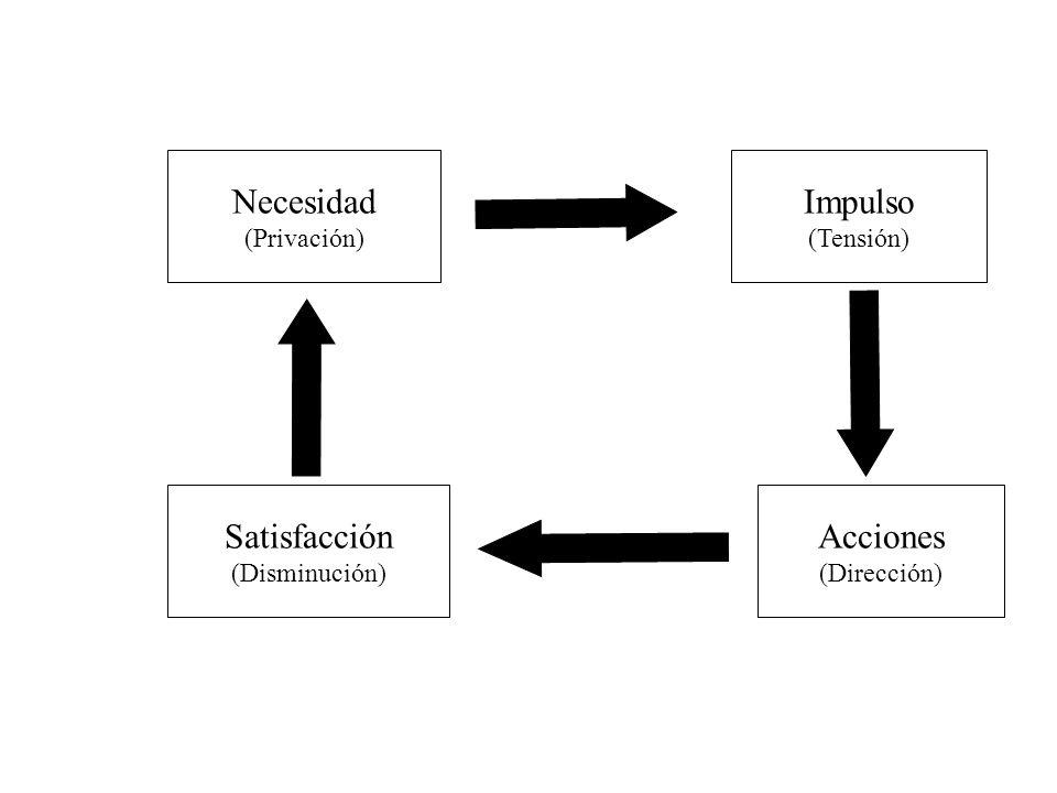 Necesidad Impulso Satisfacción Acciones (Privación) (Tensión)
