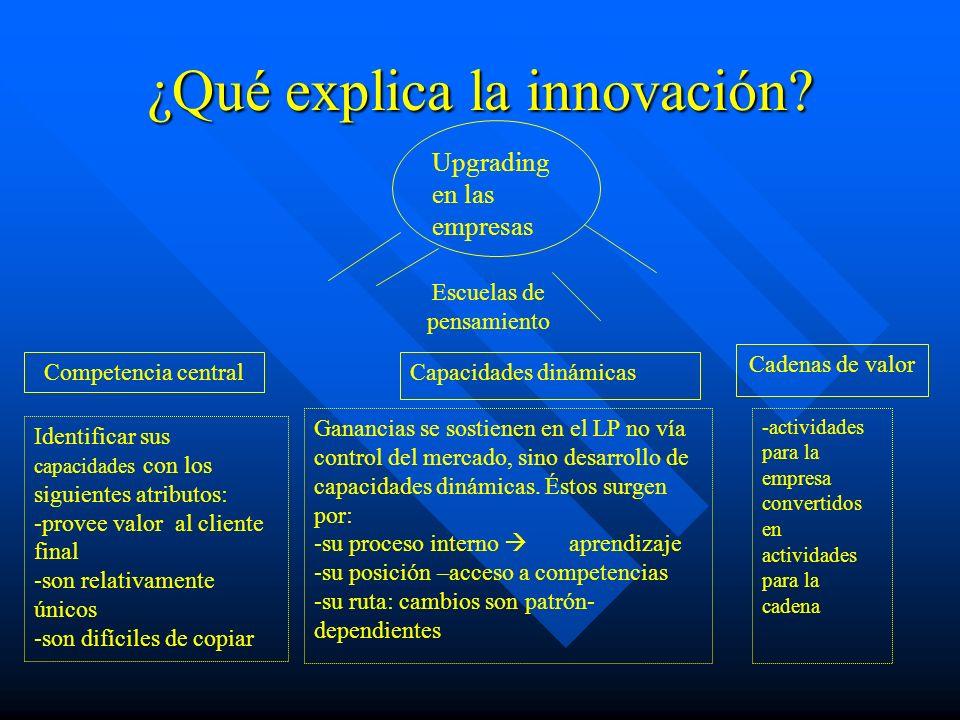 ¿Qué explica la innovación