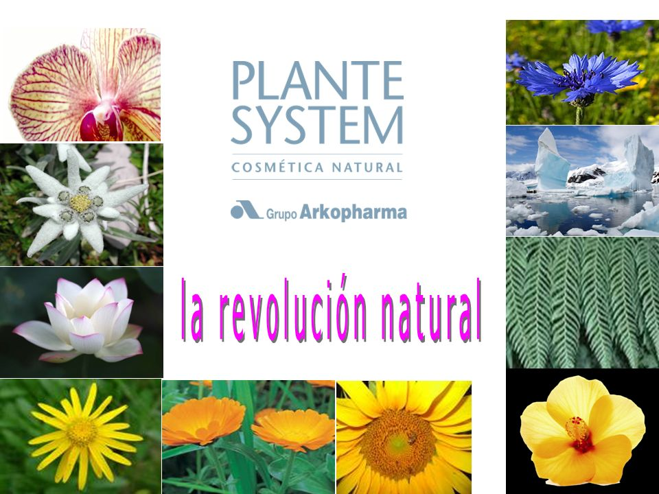la revolución natural