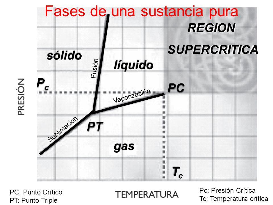 Fases de una sustancia pura