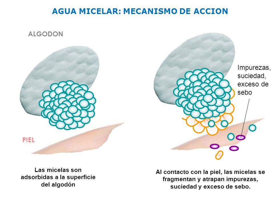 AGUA MICELAR: MECANISMO DE ACCION