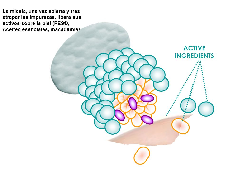 La micela, una vez abierta y tras atrapar las impurezas, libera sus activos sobre la piel (PES®, Aceites esenciales, macadamia)