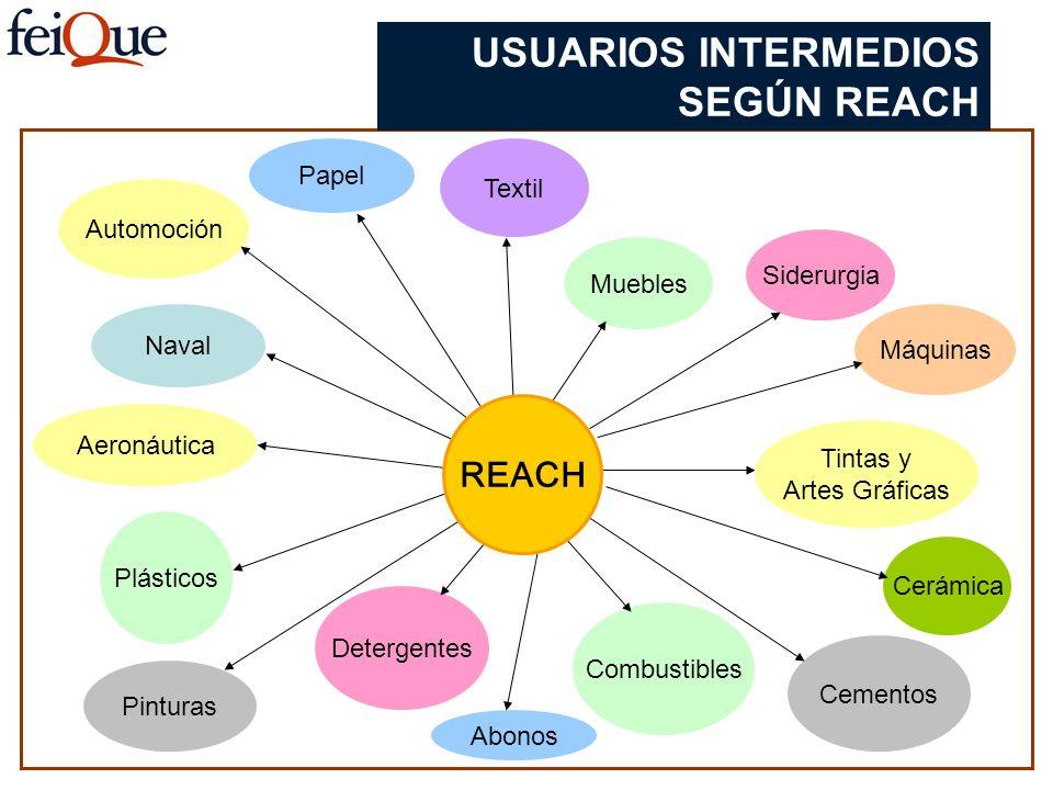 USUARIOS INTERMEDIOS SEGÚN REACH