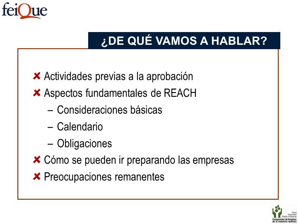 ¿DE QUÉ VAMOS A HABLAR Actividades previas a la aprobación. Aspectos fundamentales de REACH. Consideraciones básicas.