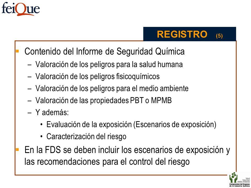 Contenido del Informe de Seguridad Química