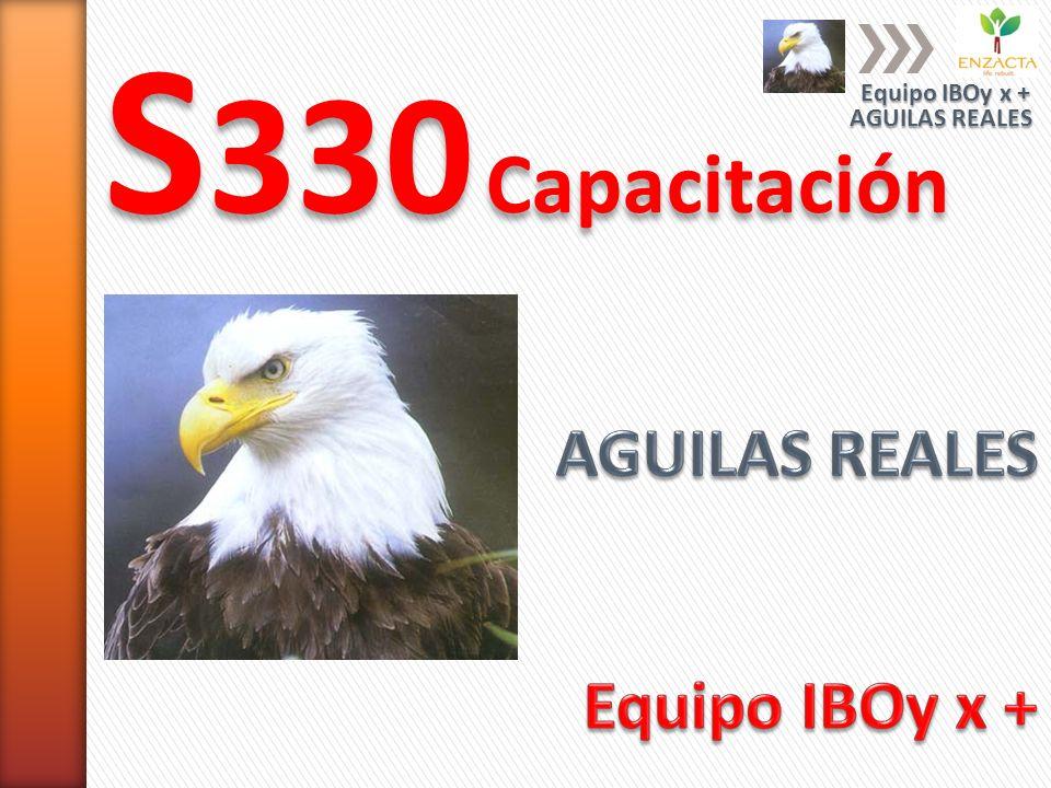 S330 Capacitación AGUILAS REALES Equipo IBOy x + Equipo IBOy x +