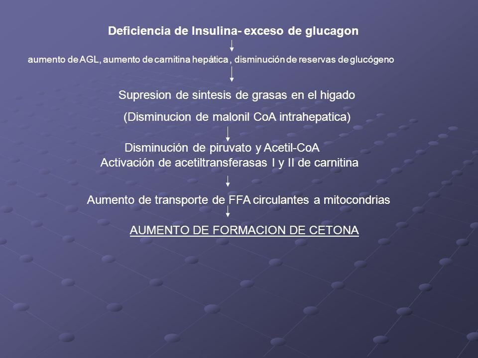Deficiencia de Insulina- exceso de glucagon