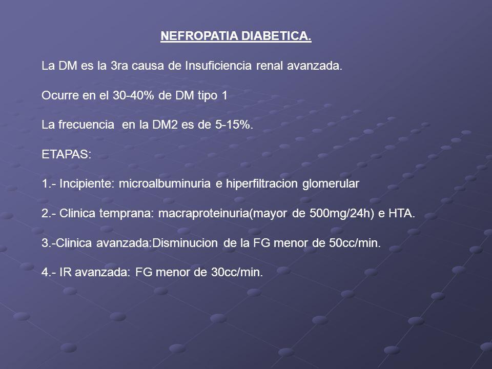 NEFROPATIA DIABETICA. La DM es la 3ra causa de Insuficiencia renal avanzada. Ocurre en el 30-40% de DM tipo 1.