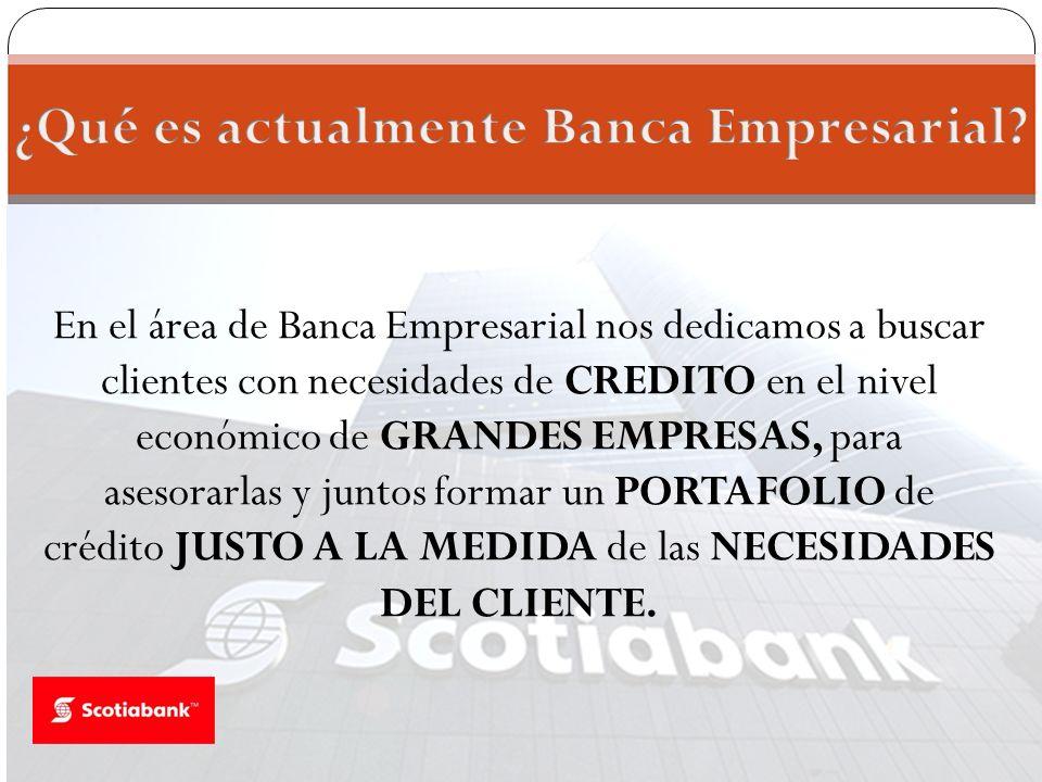 ¿Qué es actualmente Banca Empresarial