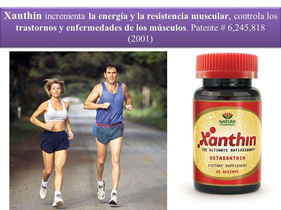 Xanthin incrementa la energía y la resistencia muscular, controla los trastornos y enfermedades de los músculos.