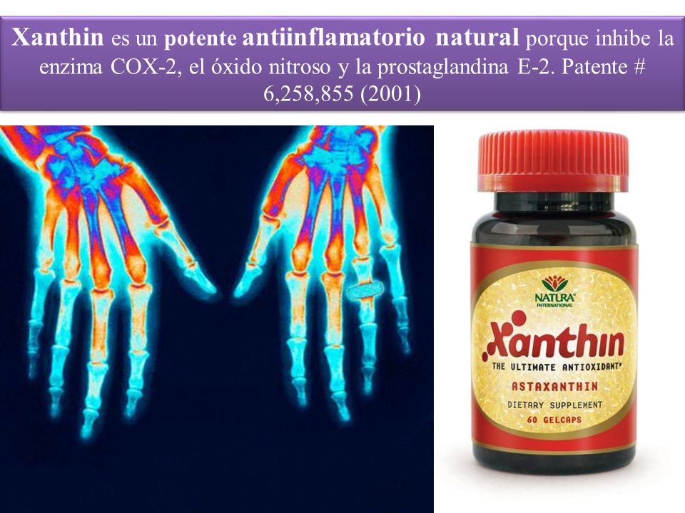 Xanthin es un potente antiinflamatorio natural porque inhibe la enzima COX-2, el óxido nitroso y la prostaglandina E-2.