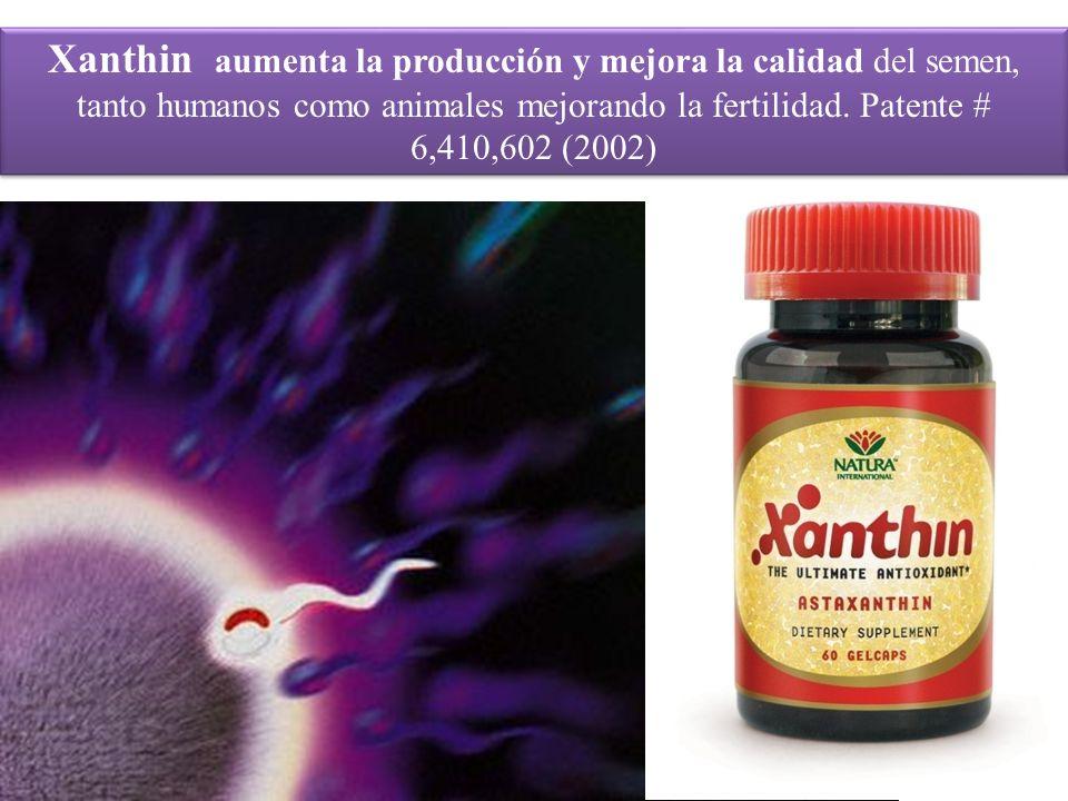 Xanthin aumenta la producción y mejora la calidad del semen, tanto humanos como animales mejorando la fertilidad.