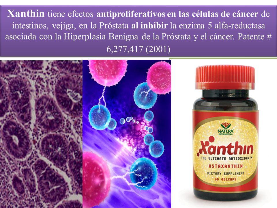 Xanthin tiene efectos antiproliferativos en las células de cáncer de intestinos, vejiga, en la Próstata al inhibir la enzima 5 alfa-reductasa asociada con la Hiperplasia Benigna de la Próstata y el cáncer.