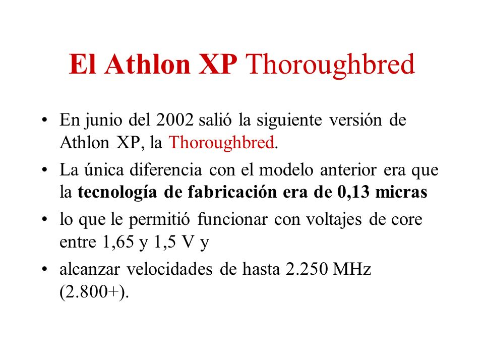 El Athlon XP Thoroughbred