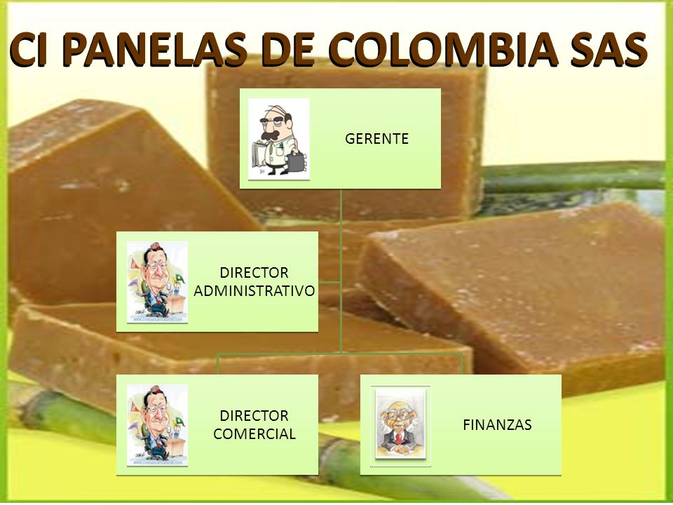 CI PANELAS DE COLOMBIA SAS