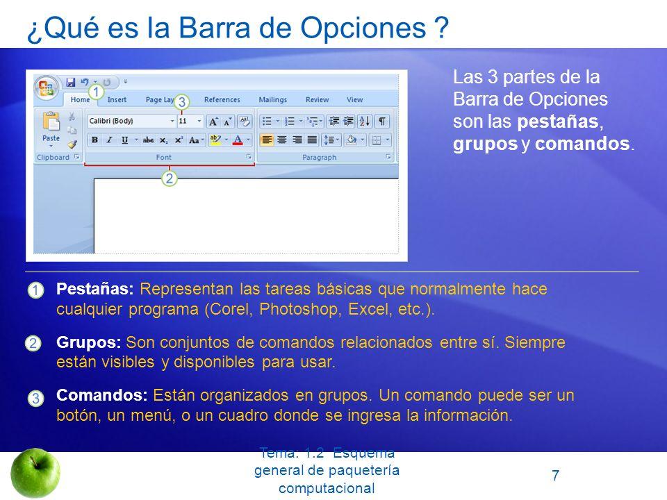 ¿Qué es la Barra de Opciones
