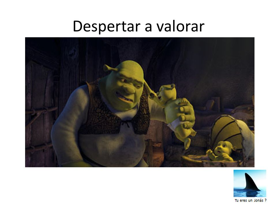 Despertar a valorar