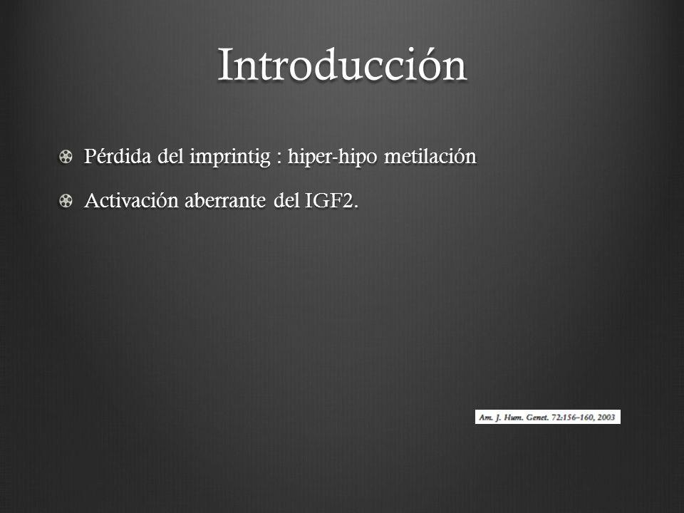Introducción Pérdida del imprintig : hiper-hipo metilación