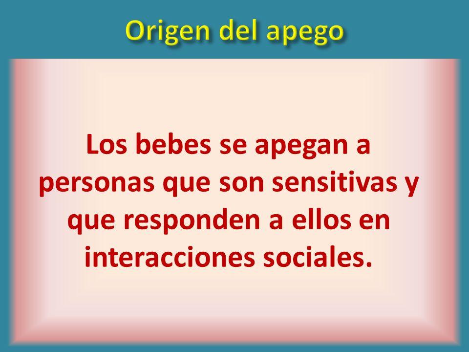 Origen del apegoLos bebes se apegan a personas que son sensitivas y que responden a ellos en interacciones sociales.