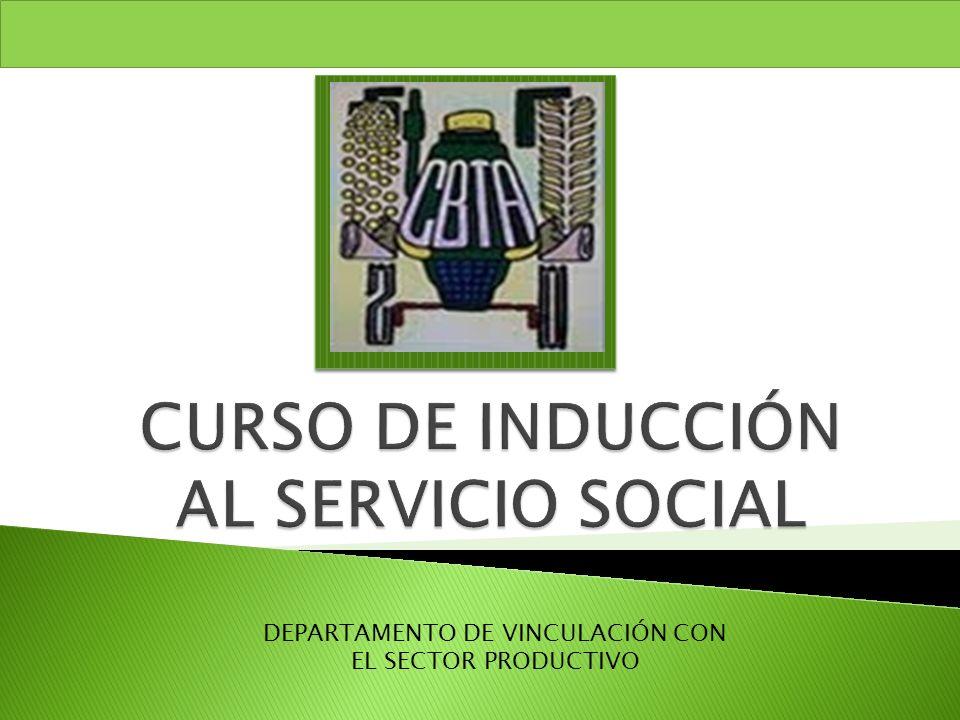 CURSO DE INDUCCIÓN AL SERVICIO SOCIAL