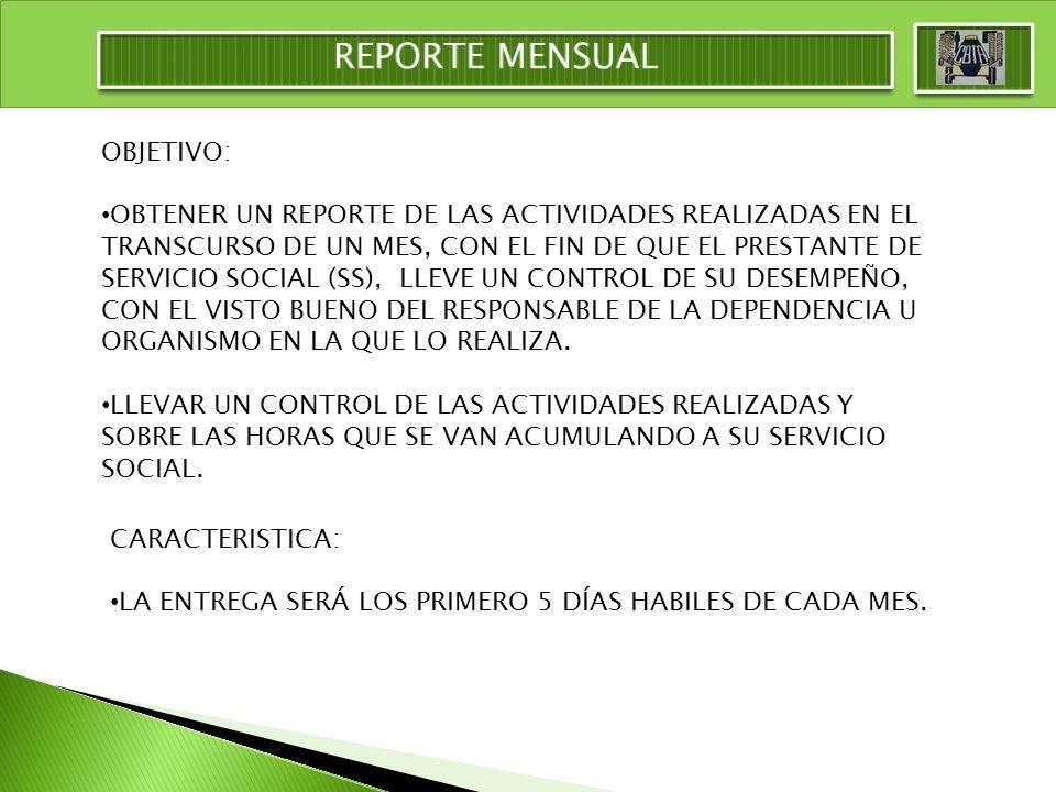 REPORTE MENSUAL OBJETIVO: