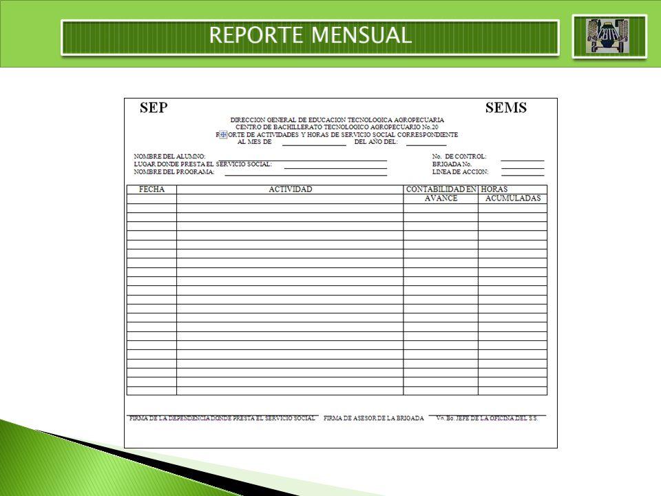 REPORTE MENSUAL