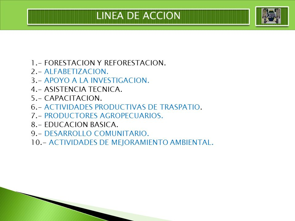 LINEA DE ACCION 1.- FORESTACION Y REFORESTACION. 2.- ALFABETIZACION.