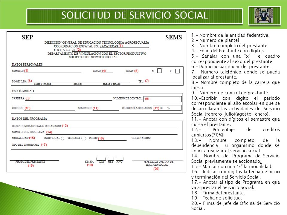 SOLICITUD DE SERVICIO SOCIAL