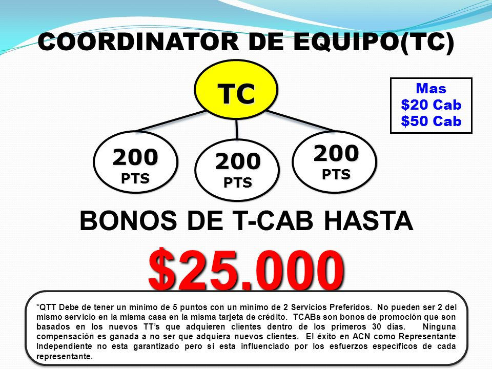 COORDINATOR DE EQUIPO(TC)