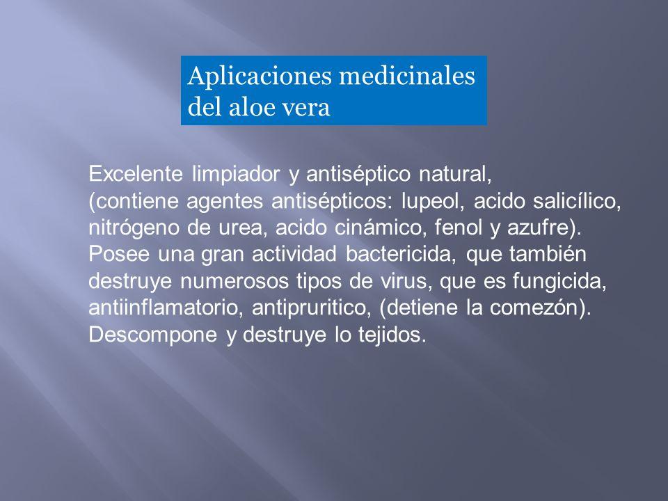 Aplicaciones medicinales del aloe vera