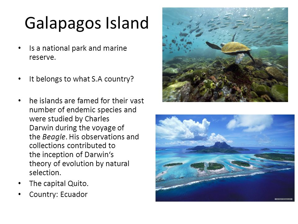 Galapagos Island Is a national park and marine reserve.