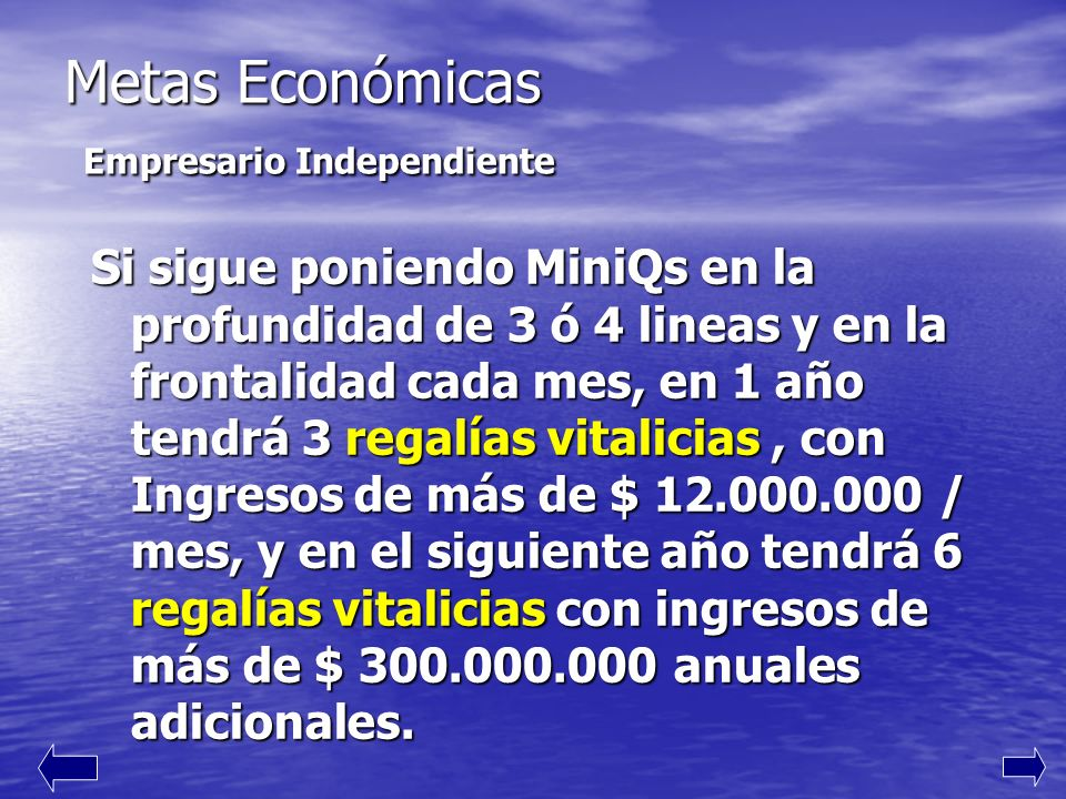 Metas Económicas Empresario Independiente
